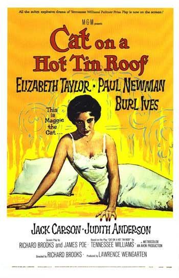 Cat_roof