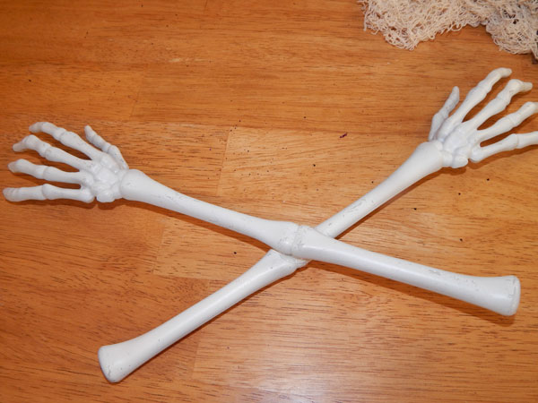 skeletonarms
